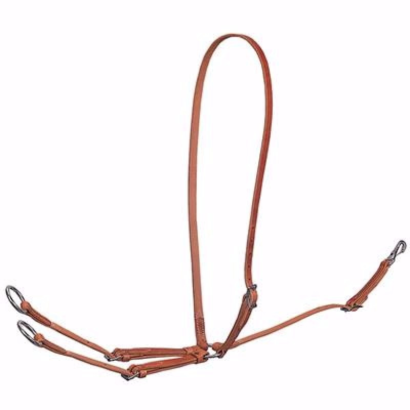 Standard Running Martingale. Leather