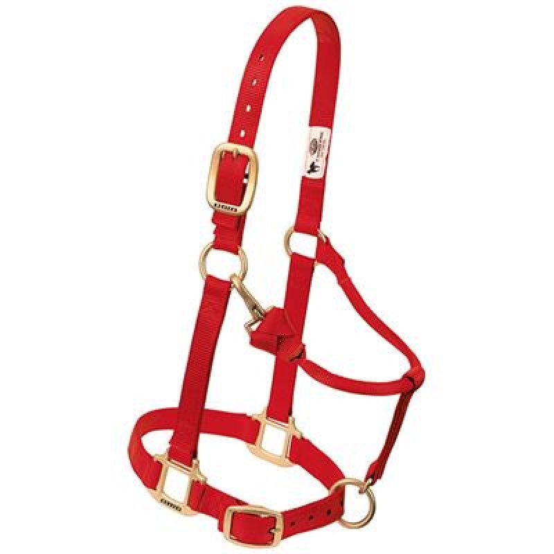 Weanling/Pony halter Red