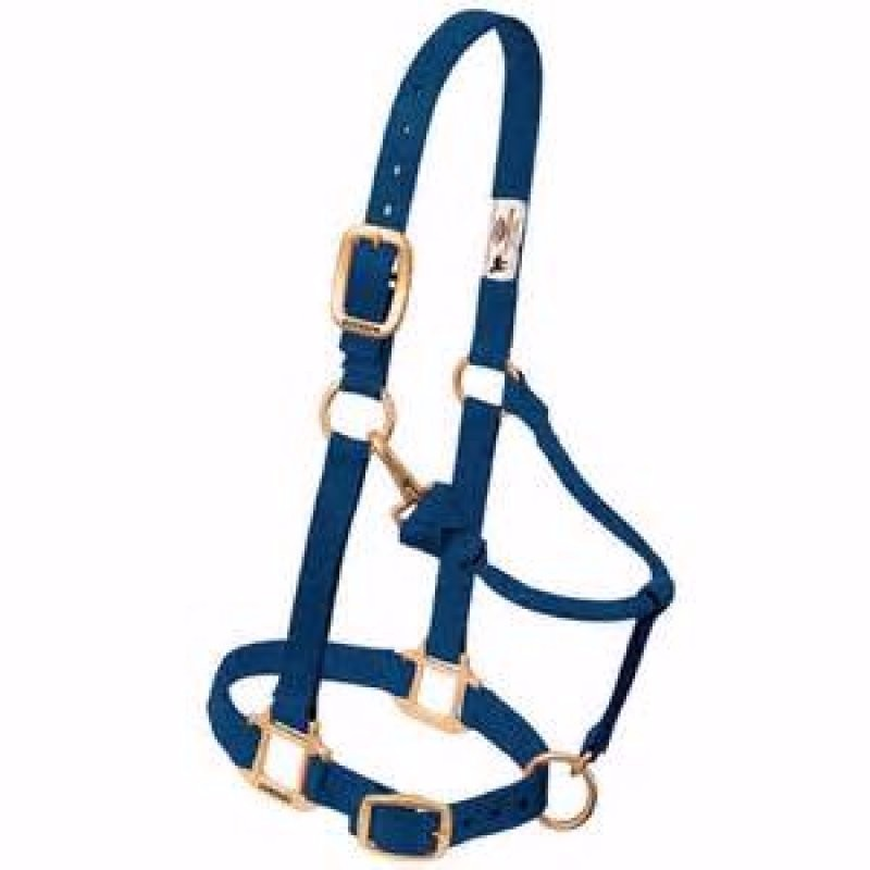 Yearling halter