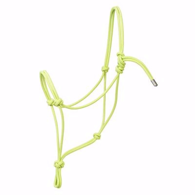 Rope Halter, Average